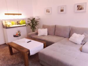 wohnzimmer-adam-reinigungsservice-galerie4