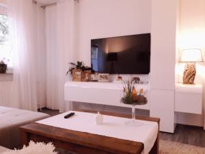 wohnzimmer-adam-reinigungsservice-galerie5